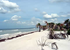 Beaches of Caladesi Island