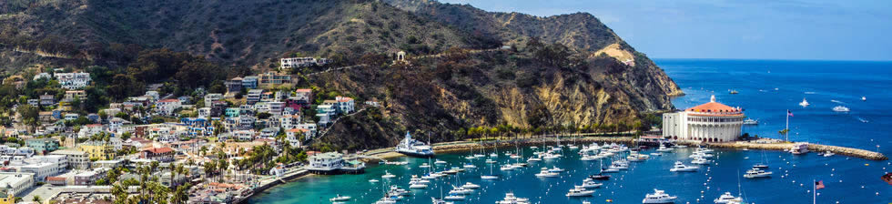 Catalina Island Cruise shuttles