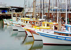 Spend a day at Fisherman's Wharf