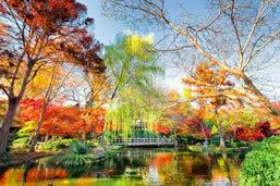 Visiting Fort Worth Botanic Garden