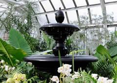Visiting Franklin Park Conservatory