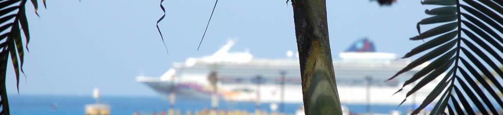 Kona Cruise shuttles