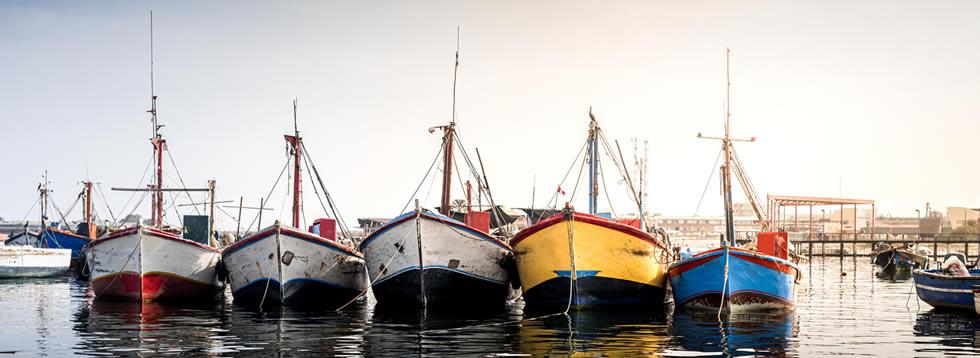Pisco Port shuttles