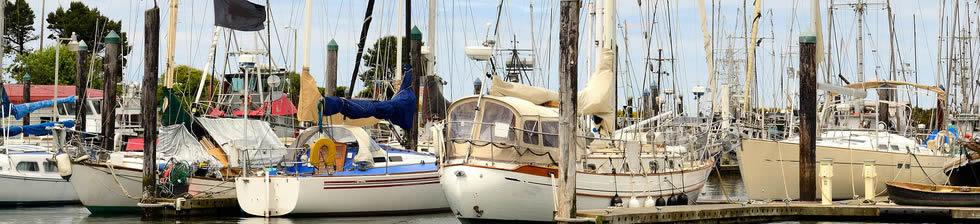 Port of Charleston Cruise shuttles