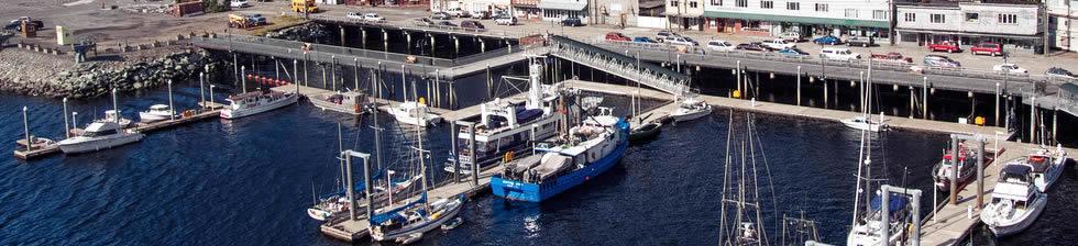 Port of Ketchikan Cruise shuttles