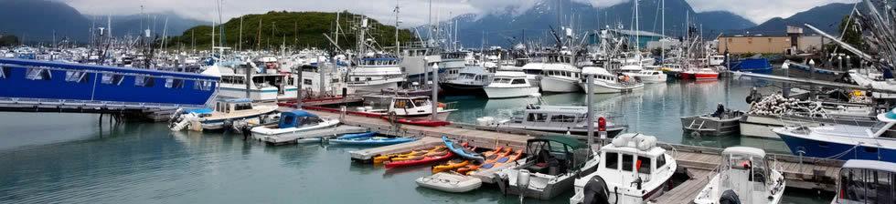 Seward Harbor Cruise shuttles