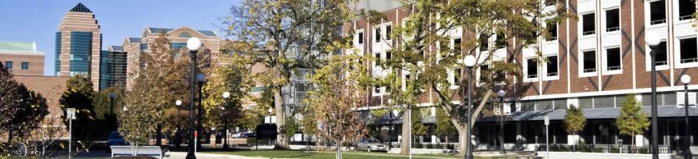 University of Illinois shuttles
