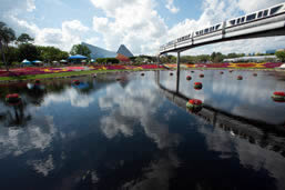 Walt Disney Parks and Resorts