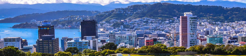 WLG airport shuttle transfers