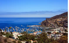 Catalina Island Cruise Port shuttle to the airport