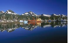Kodiak Harbor Convention Center Airport Shuttles